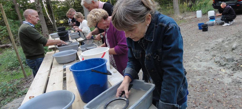 Fossilvaskning